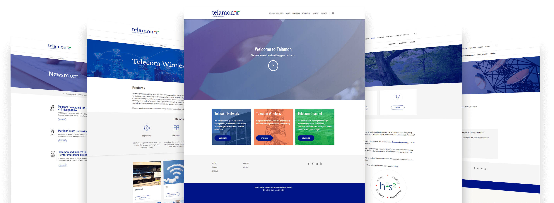 telamon-web-mockup-1